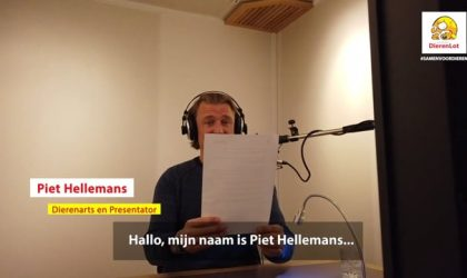Dierenlot – Piet Hellemans & studio dog Mickey